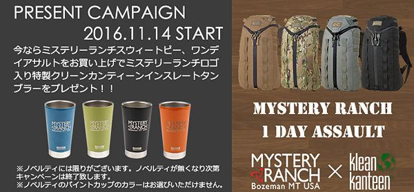 1611_mysterycampaign_